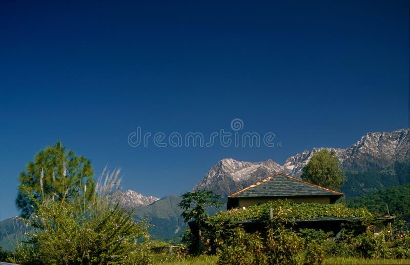 Station de colline de Palampur, vallée de Kangra, Himachal Pradesh, Inde images libres de droits
