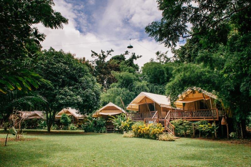 Station de vacances luxueuse de camping dans la forêt de nature, vacances glamping dedans image stock