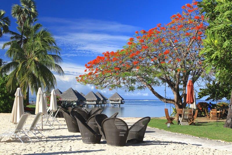 Station de vacances tropicale Tahiti images libres de droits