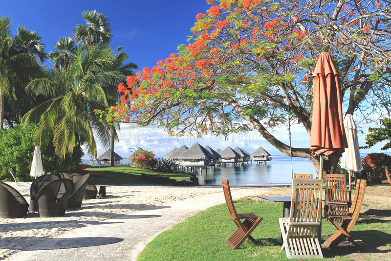 Station de vacances tropicale Tahiti images stock