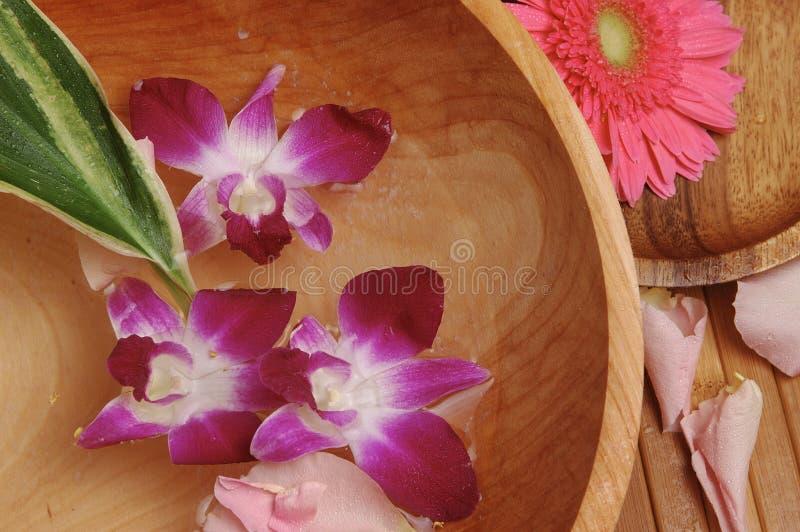 Station thermale d'orchidée image libre de droits