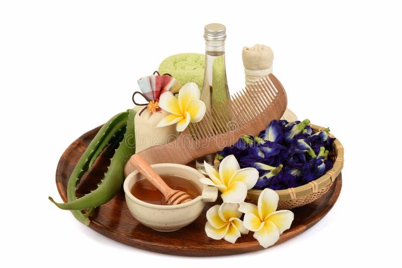 Station thermale de cheveux de traitements avec l'aloès Vera, le pois de papillon, l'huile de noix de coco et le miel images stock