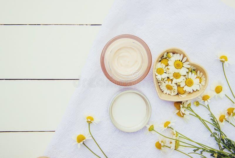 Station thermale et crème avec l'extrait de camomille images libres de droits