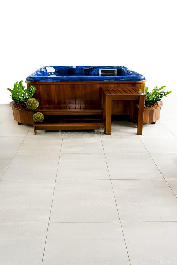 Download Station Thermale Hydraulique De Massage Image stock - Image du contemporain, type: 8655891