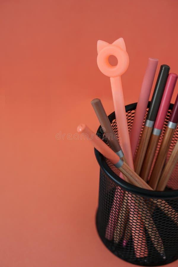stationery E Ручки с ушами и карандашами кота в корзине на красной предпосылке с космосом бесплатной копии стоковые изображения rf