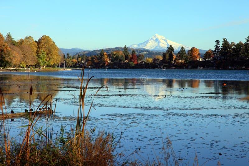 Stationnement bleu de lac. image libre de droits