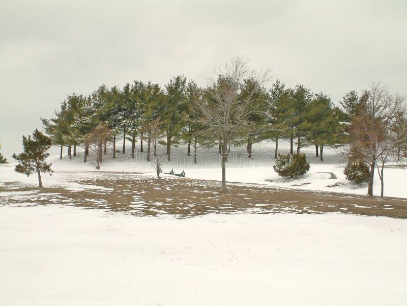 Stationnement dans la neige photo libre de droits