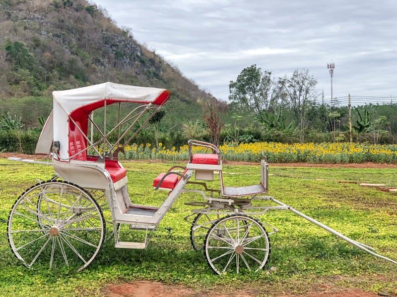 Stationnement de chariot sur le parc avec le champ et la montagne verts images libres de droits