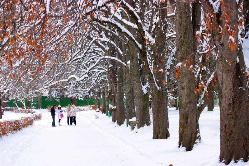 Stationnement de l'hiver. image stock