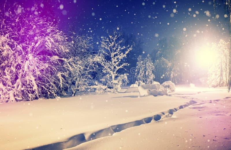 Stationnement de l'hiver dans la neige Paysage hivernal fantastique soirée givrée en parc de ville image libre de droits
