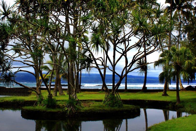Stationnement de plage de Richardson dans Hilo, Hawaï photos libres de droits