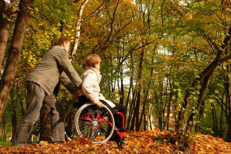 Stationnement de Stroll en automne image stock