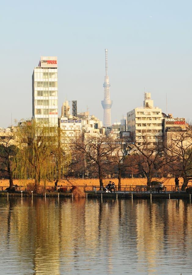 Stationnement de Tokyo photo stock