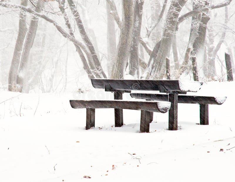 Stationnement gentil en hiver image stock