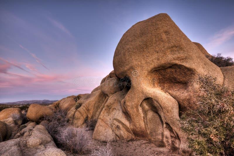 Stationnement national d'arbre de Joshua de roche de crâne photo libre de droits