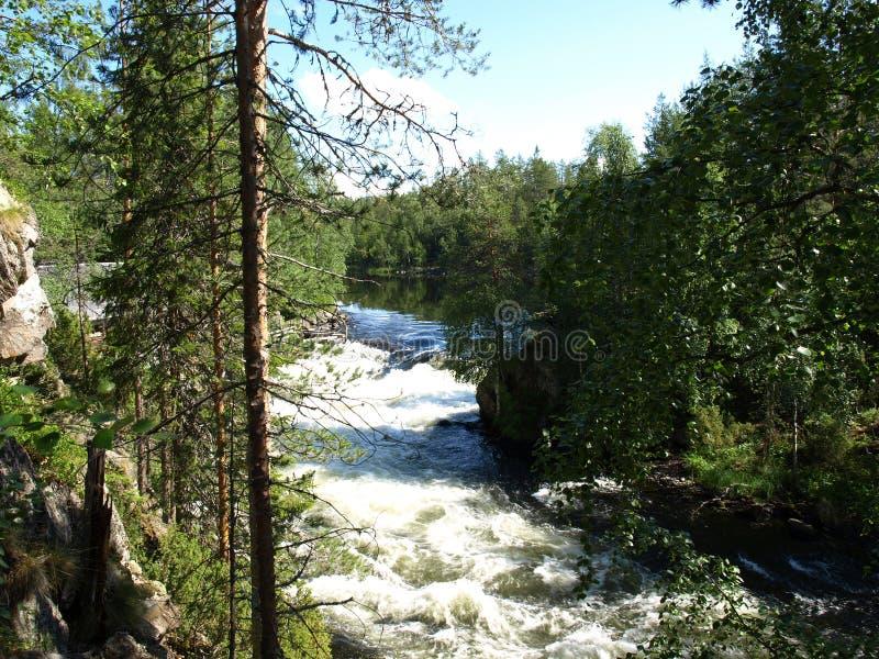 Stationnement national d'Oulanka photos libres de droits