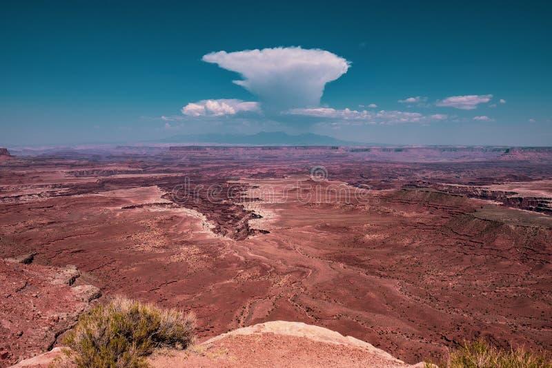 Stationnement national de Canyonlands en Utah, Etats-Unis image libre de droits