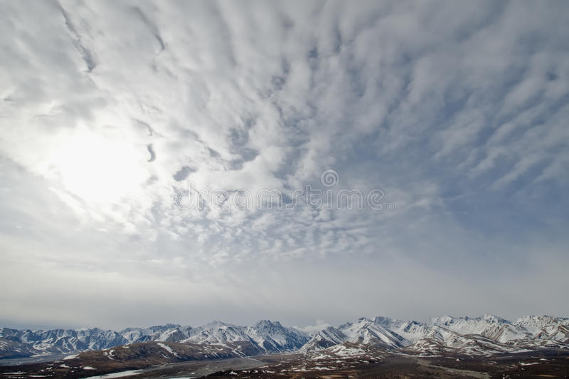 Stationnement national de Denali images stock
