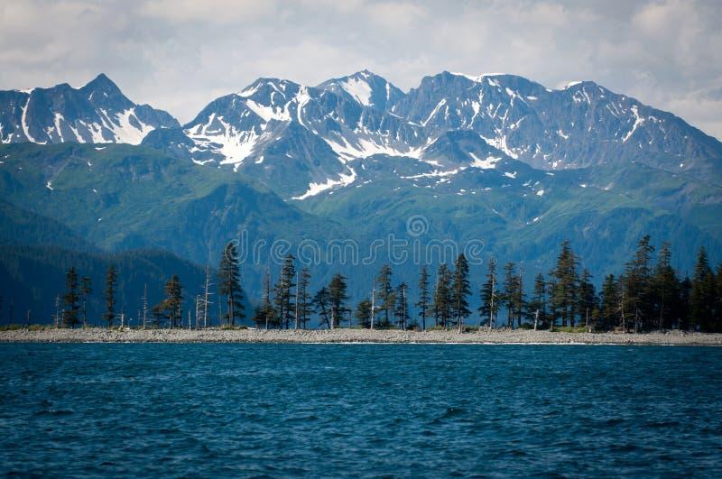 Stationnement national de fjords de Kenai photographie stock libre de droits