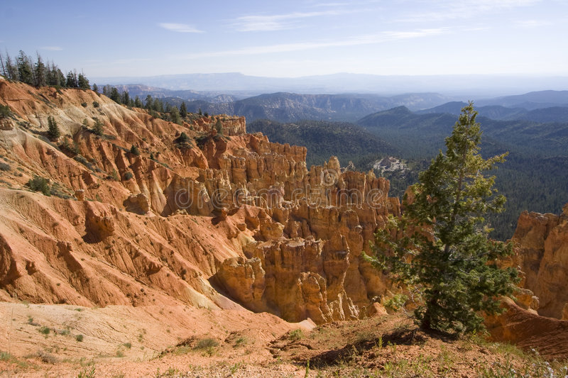 Stationnement national de gorge de Bryce, Utah photo stock
