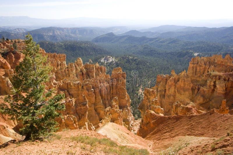 Stationnement national de gorge de Bryce, Utah image stock