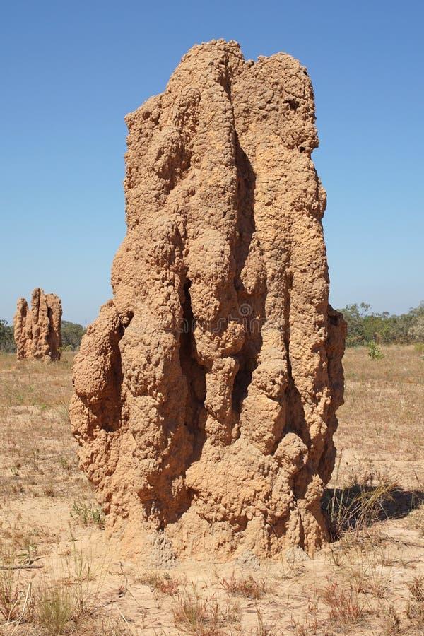 stationnement national de kakadu de l'australie image libre de droits