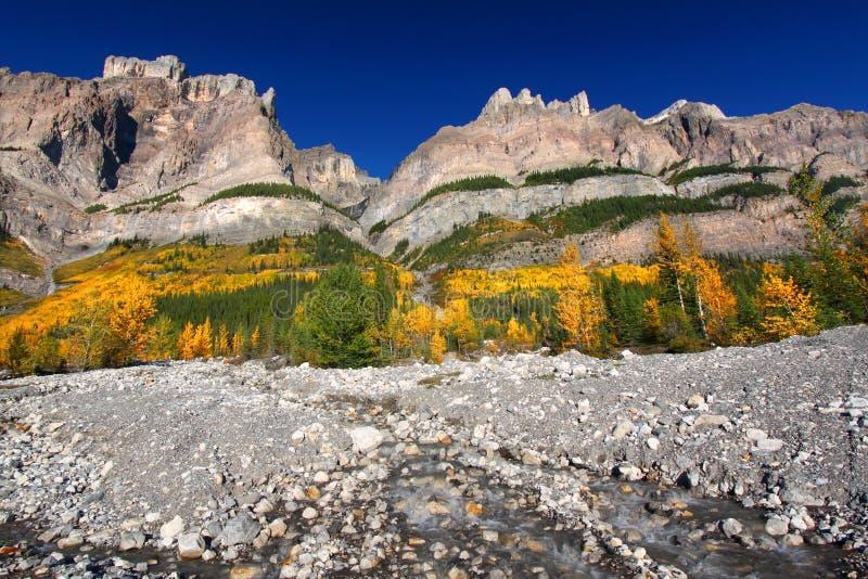 Stationnement national de Wilson Banff de support images stock