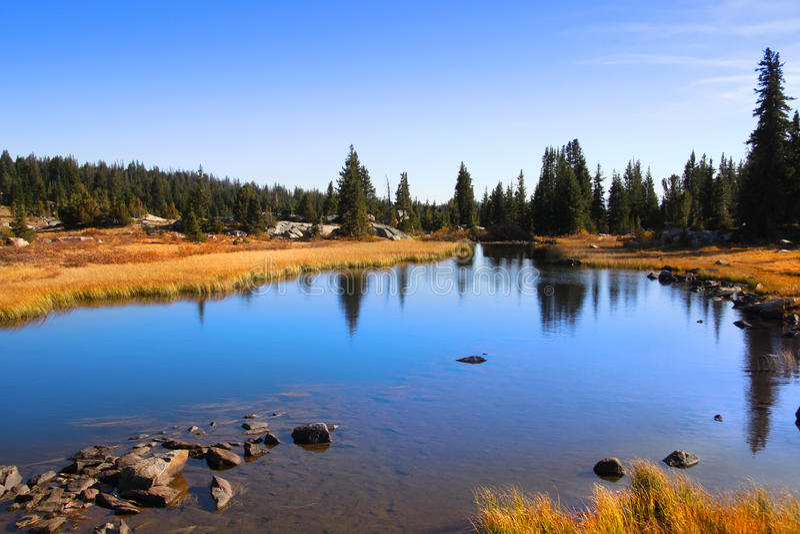 Stationnement national de Yellowstone image stock