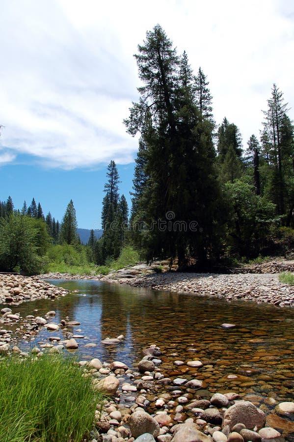 Stationnement national de Yosemite de paysage de l'eau de Yosemite photographie stock libre de droits