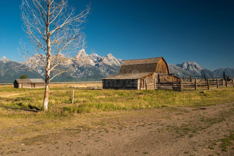 Stationnement national grand de Teton images stock