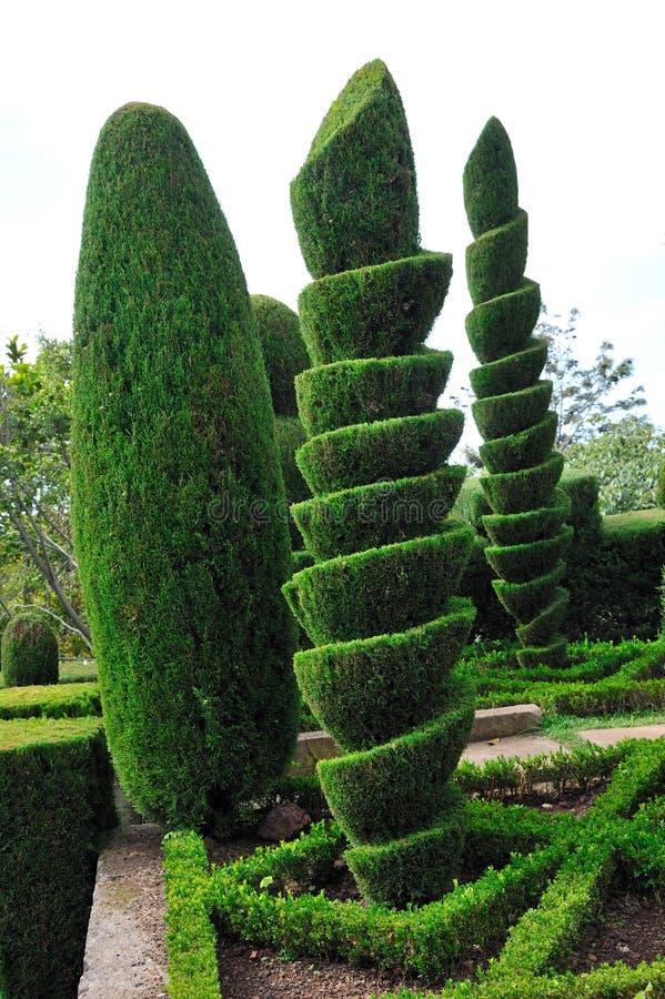 Stationnement vert décoratif - jardin botanique Funchal, images stock