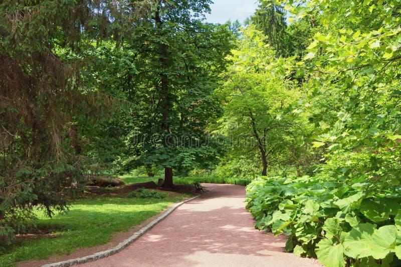 Stationnez la ruelle Vue de jardin botanique de parc de Sofiyivsky dans la ville d'Uman, Ukraine photos libres de droits