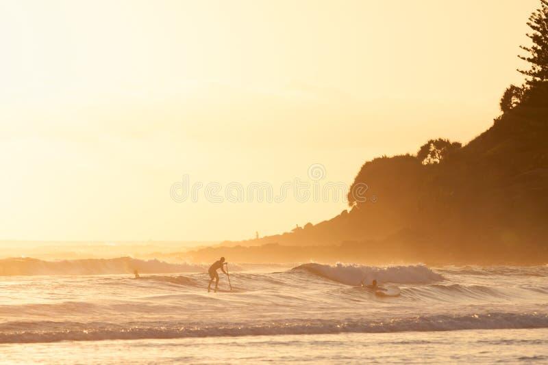 Stativ paddlar upp att surfa i Burleigh huvud royaltyfri foto
