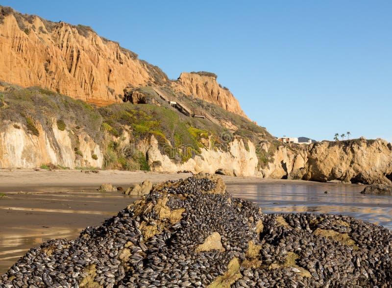 Statlig strand Kalifornien för El Matador royaltyfri foto