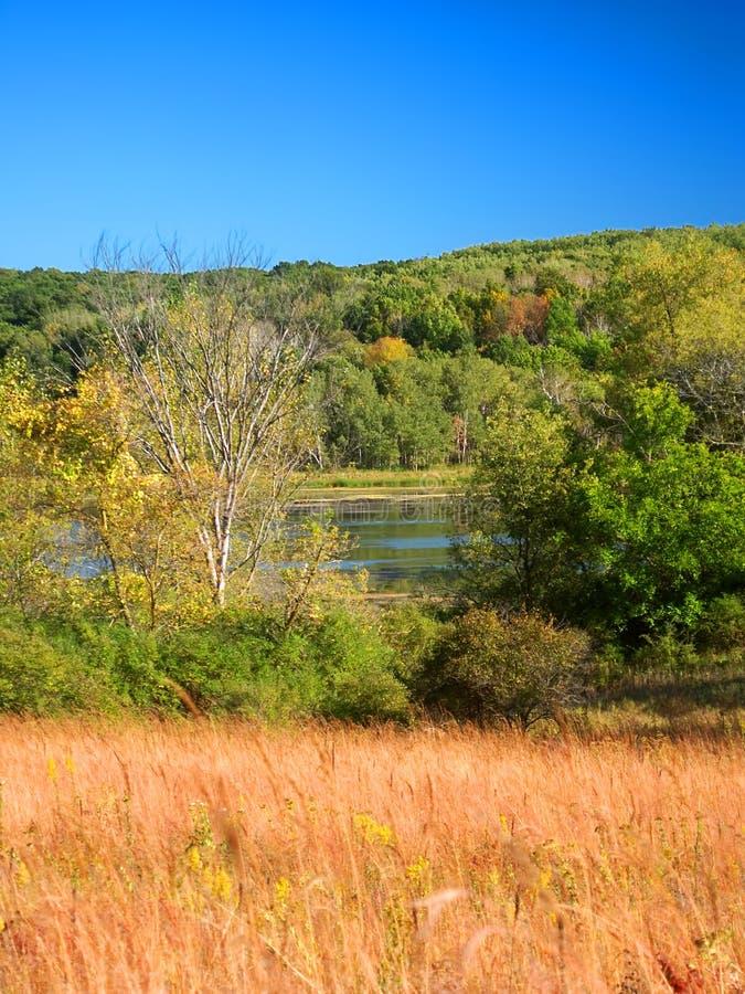 Stato Forest Wisconsin della moraine del bollitore fotografia stock libera da diritti