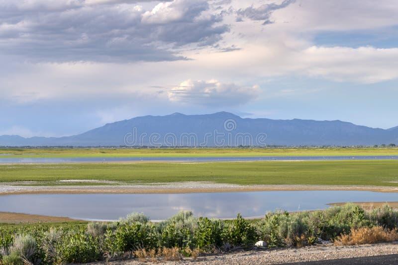 Statsparken i Antelope arkivbilder