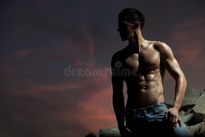 Stattlicher Bodybuilder lizenzfreie stockfotografie