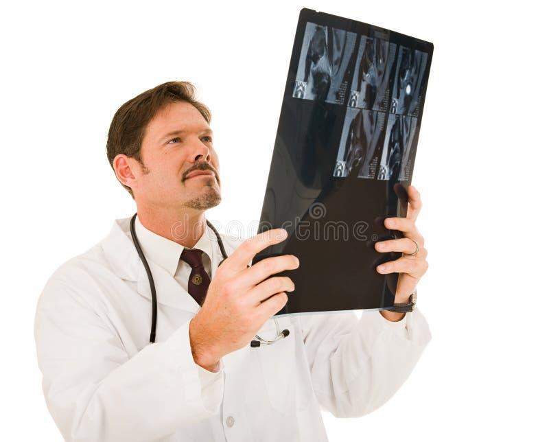 Stattlicher Doktor mit MRI lizenzfreie stockfotos