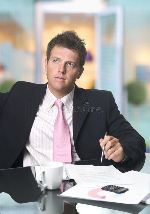 Stattlicher Geschäftsmann stockfotografie