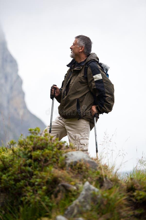 Stattliches nordisches Gehen des älteren Mannes lizenzfreie stockfotografie