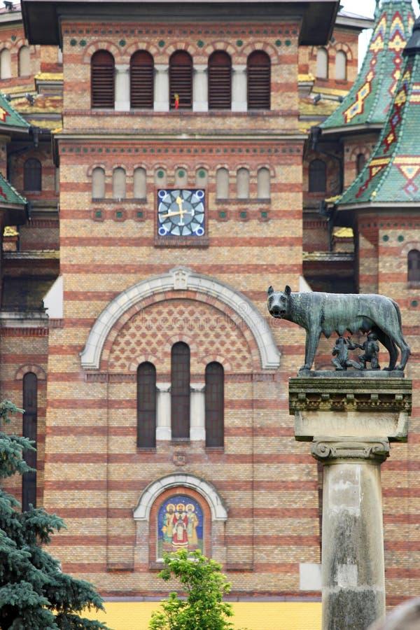 Statua con il simbolo del lupo di Timisoara immagini stock libere da diritti