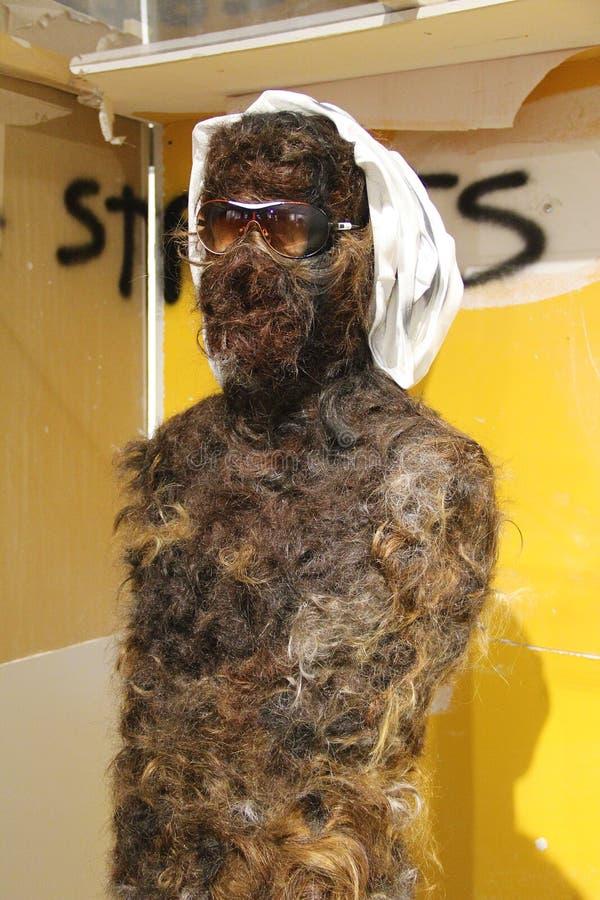 Statua coperta in capelli immagini stock libere da diritti