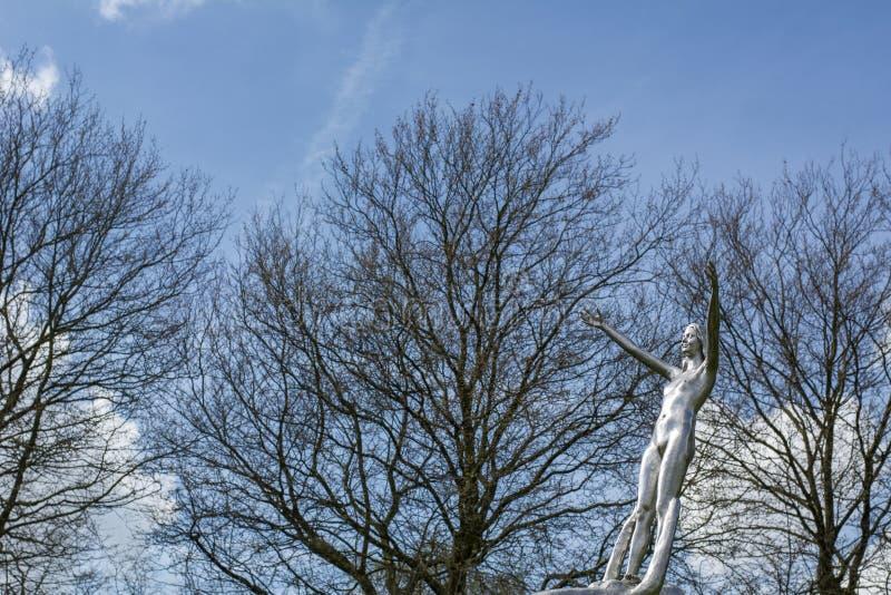 Statua d'acciaio della donna nuda con gli alberi nudi fotografia stock libera da diritti