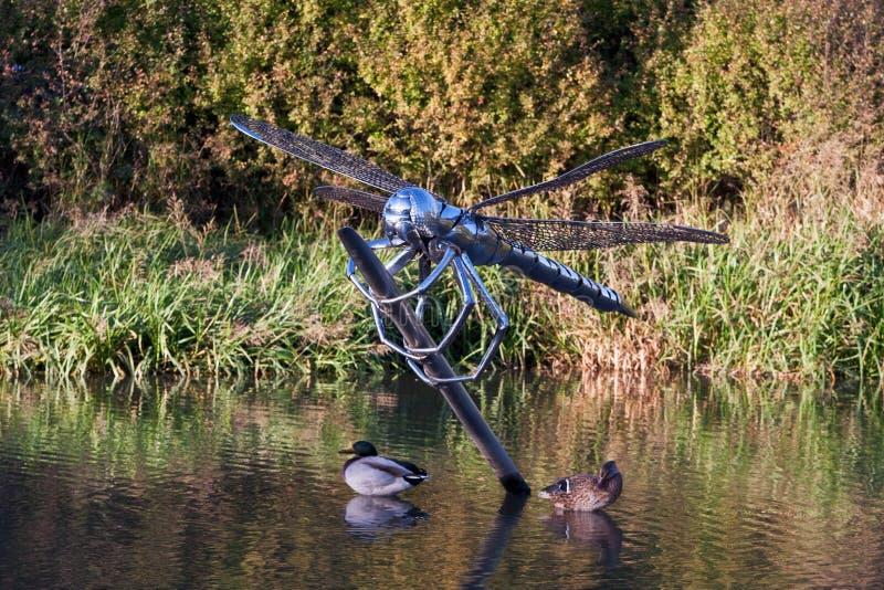 Statua della libellula in acqua circondata dalle anatre fotografie stock libere da diritti