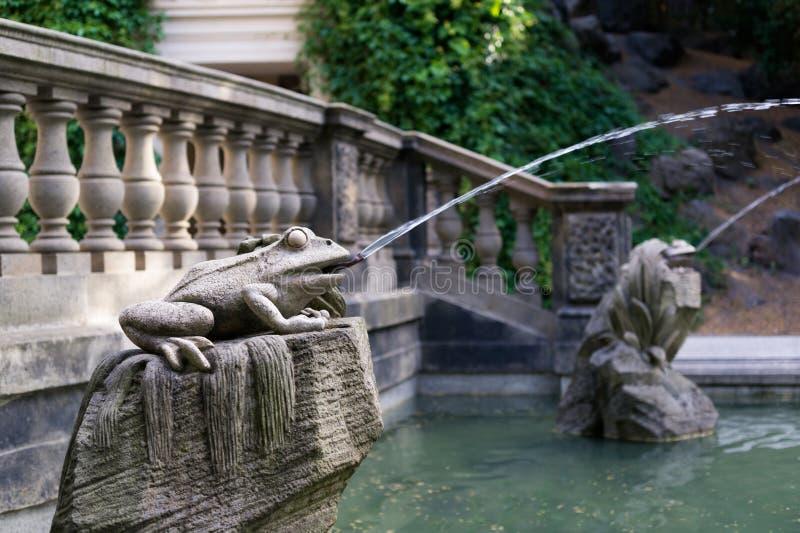 Statua della rana con la spruzzatura dell'acqua immagine stock