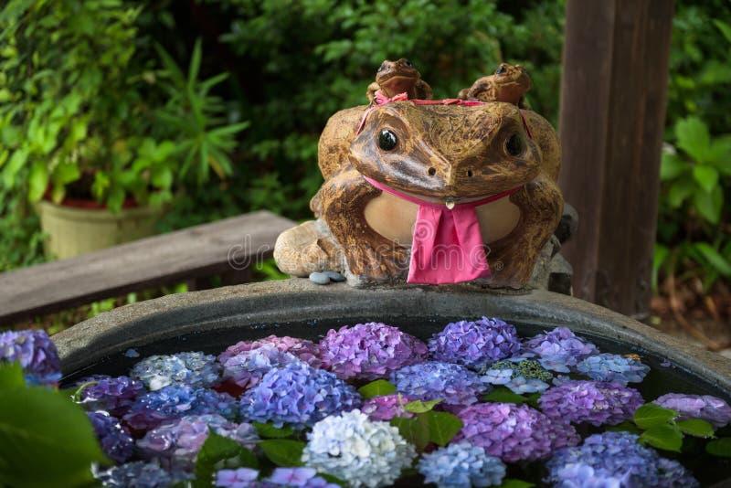 Statua della rana sull'orlo di piccolo stagno con i fiori porpora immagini stock