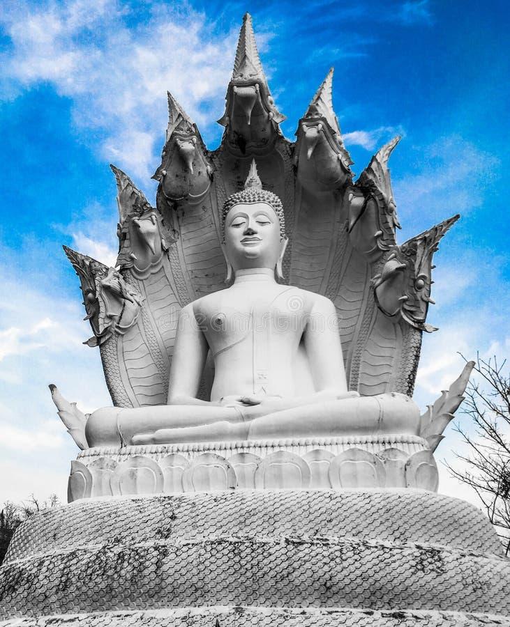 Statua di Buddha di bianchezza immagine stock