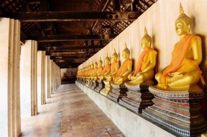 Statua di Buddha nella fila fotografia stock libera da diritti