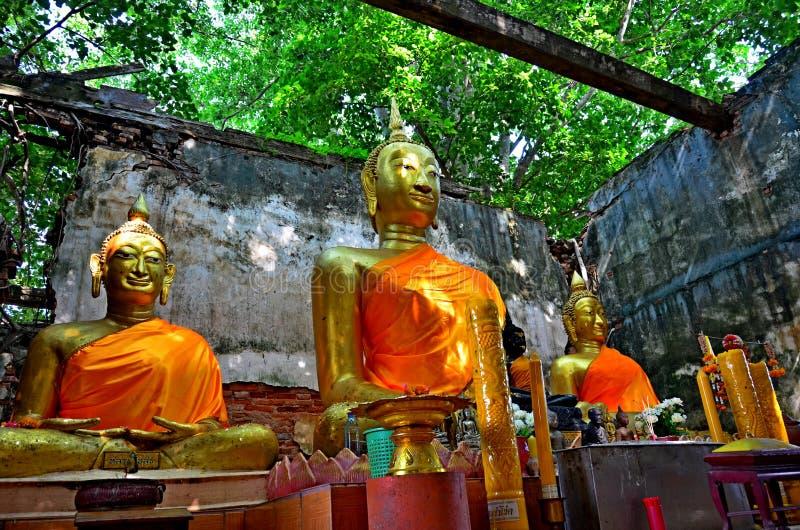 Statua di Buddha in Tailandia Ang Thong fotografie stock libere da diritti