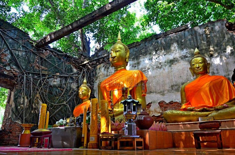 Statua di Buddha in Tailandia Ang Thong fotografia stock libera da diritti